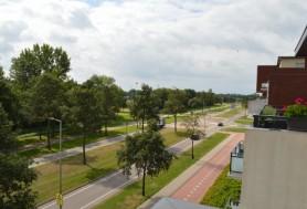 Wulpstraat