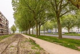 Plotinusstraat