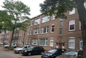 Fazantstraat, Rotterdam
